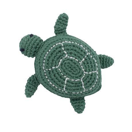 Sebra Rassel Schildkröte